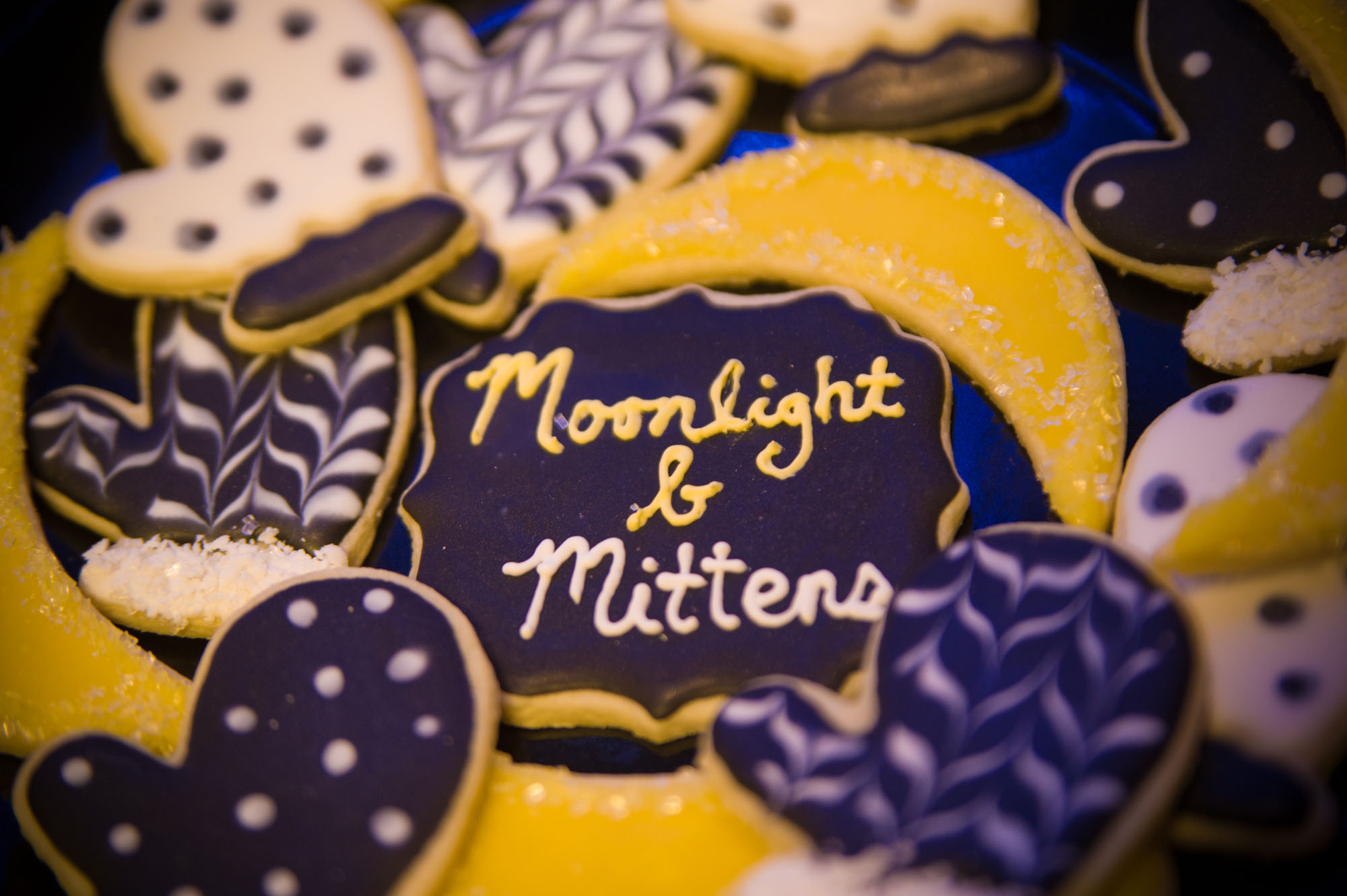 Moonlight and Mittens Wrap up!